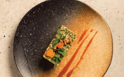 Fine Dine nowy katalog 2019